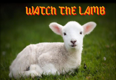 watch the lamb.png