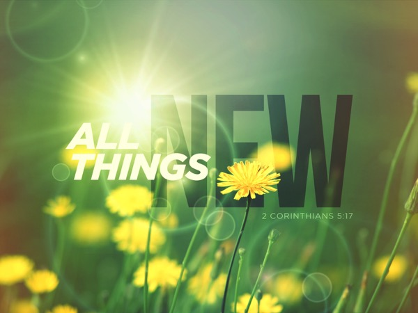 All Things New 2